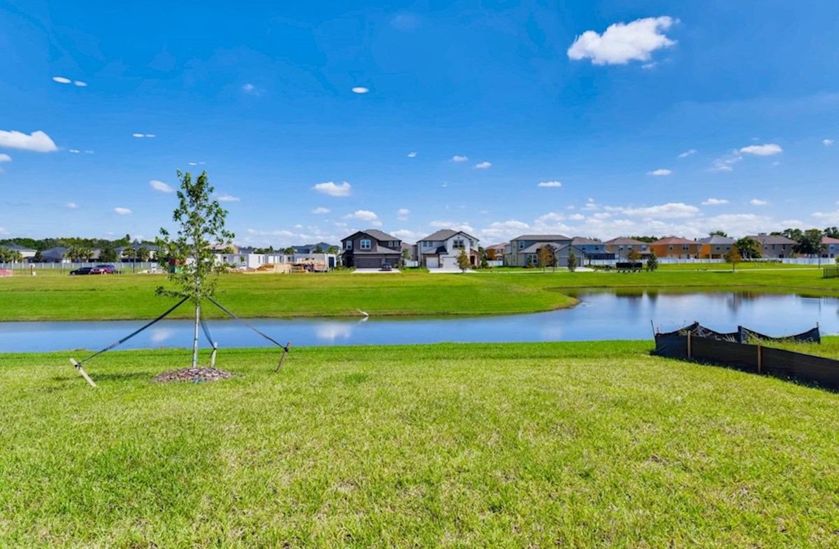 Lucia Bay quick move-in Pond in backyard
