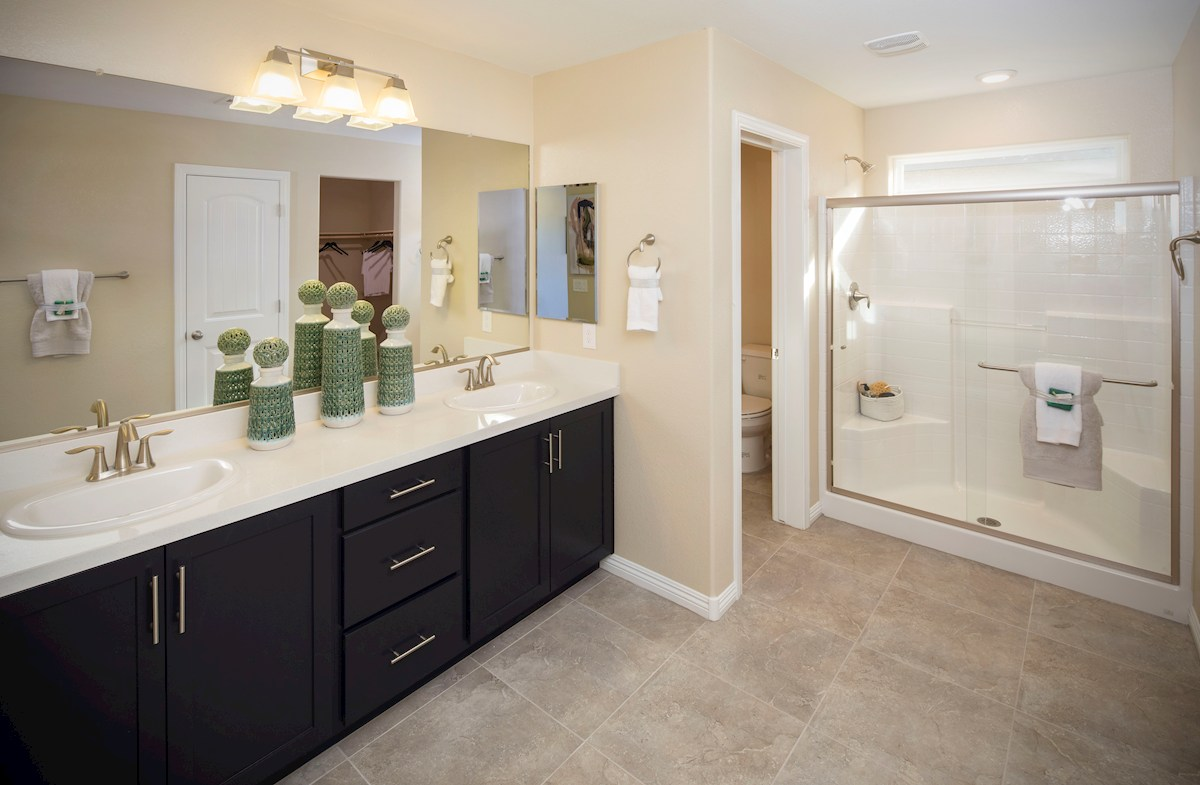spa-inspired master bathroom