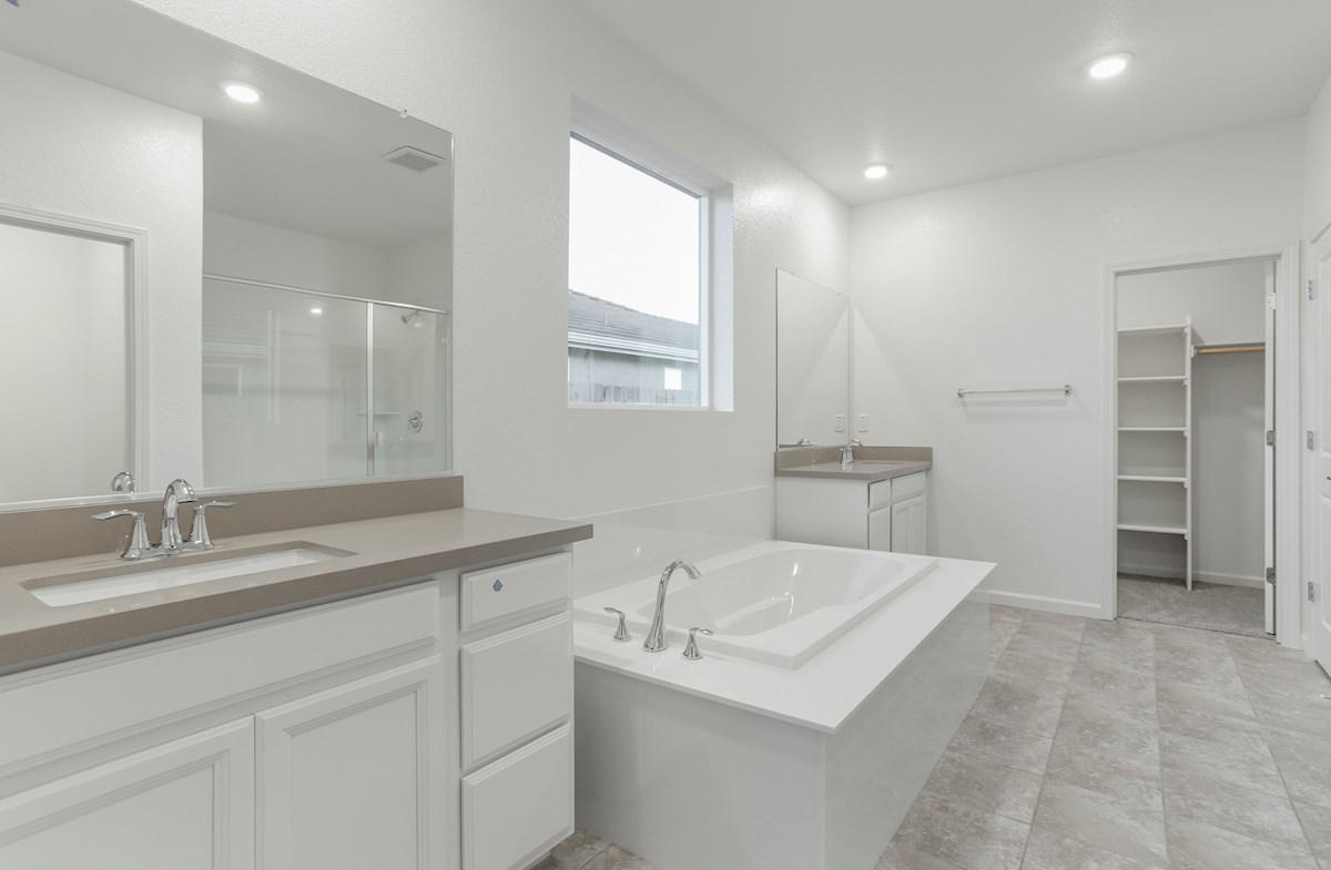 Alpine quick move-in spa inspired master bath