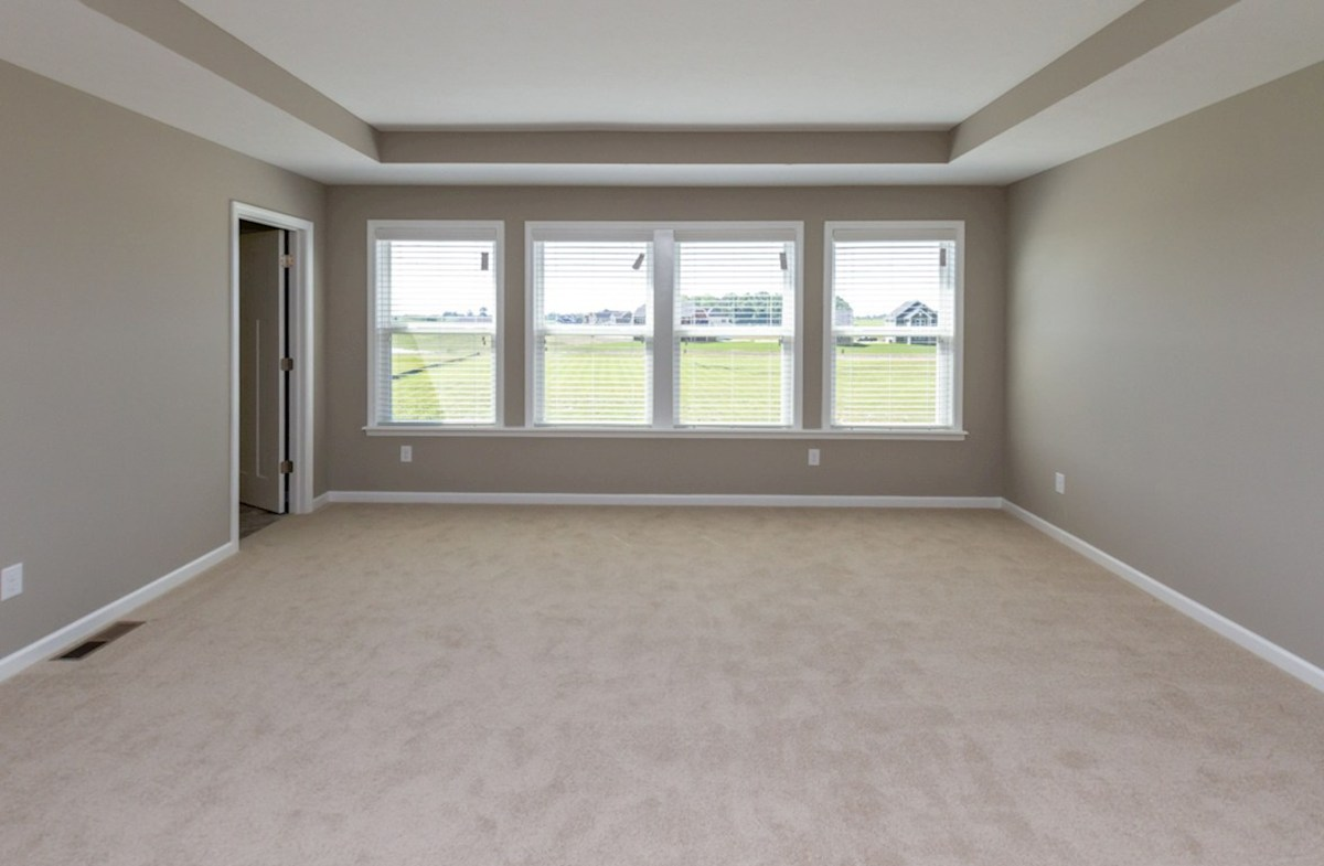 Whitley quick move-in Large master suite with trey ceiling