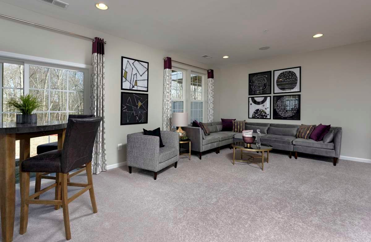 Annapolis recreation room with carpet