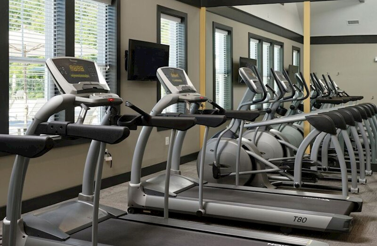 treadmills in fitness room
