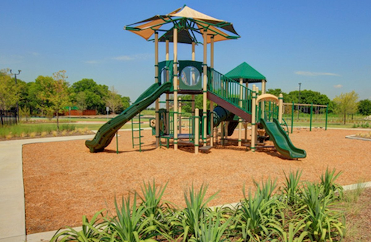 playground with swingset