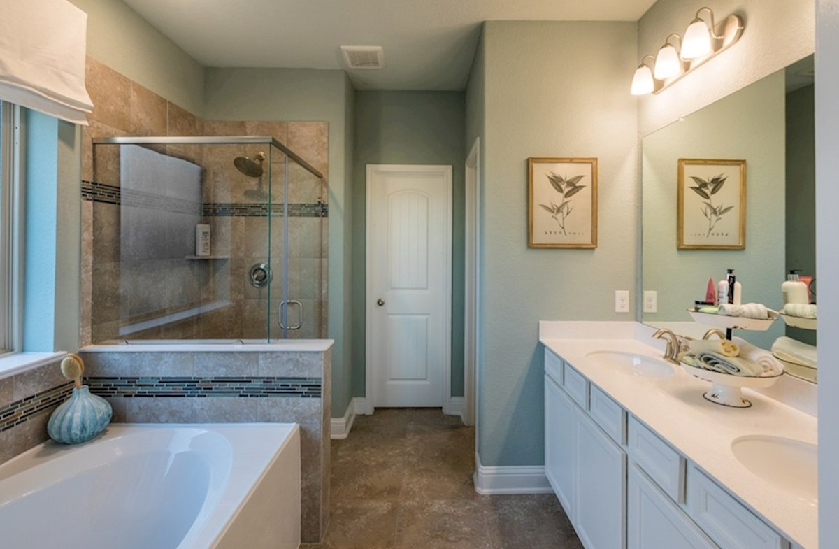 Amira  Alder master bath with separate tub and shower