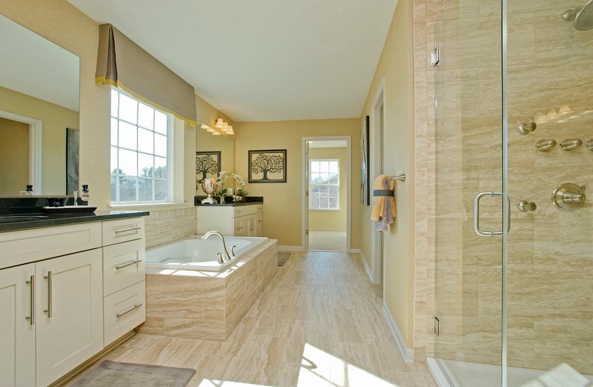 Master bathroom in Federalsburg