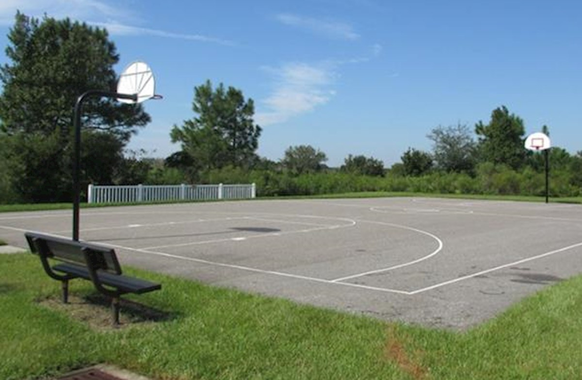 community paved basketball court