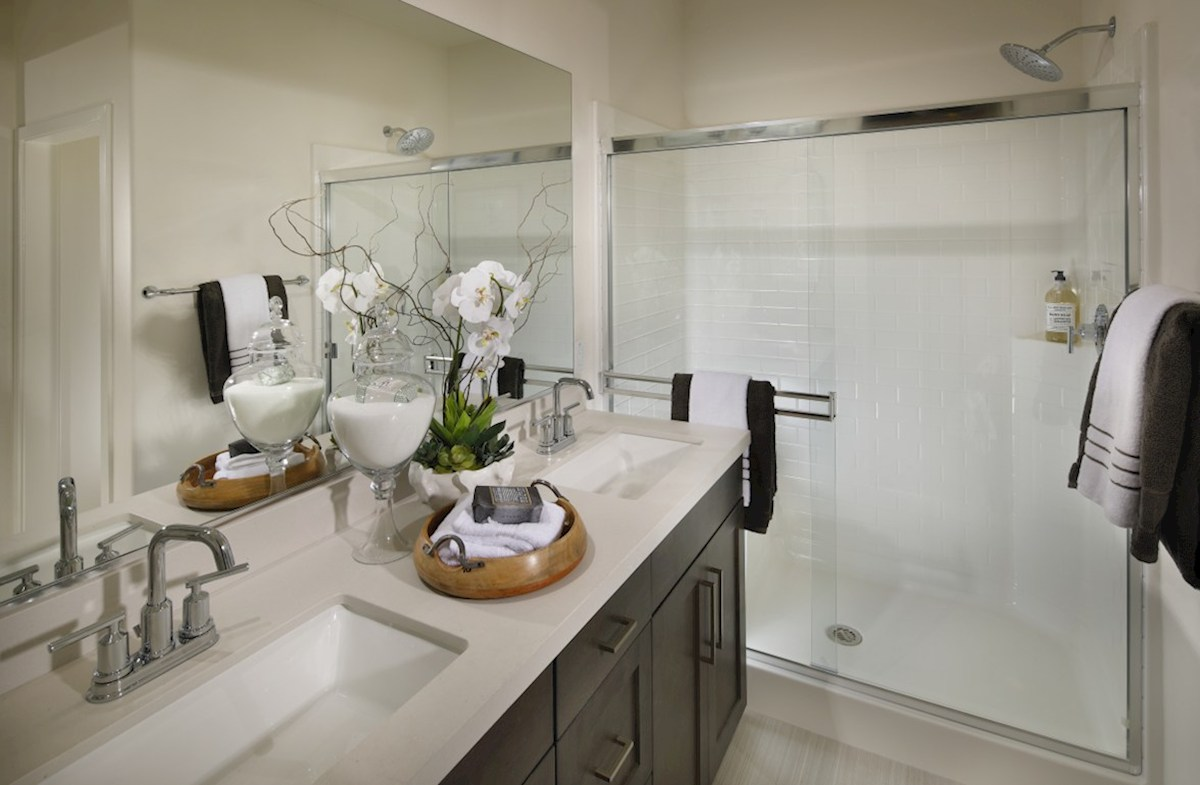 Mission Lane Orchid spa-inspired master bathroom