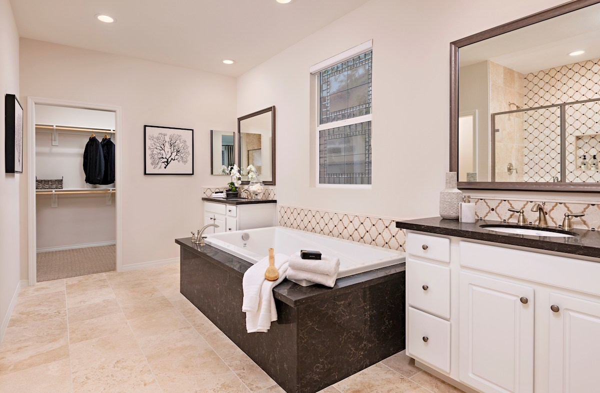 Deluxe master bath with shower and soaking tub