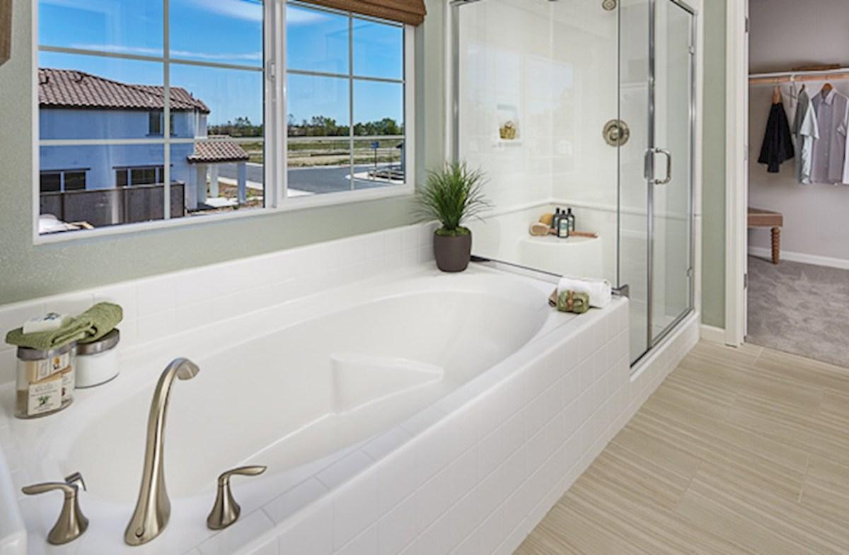 Natomas Field Residence 2 Spa-like master bath
