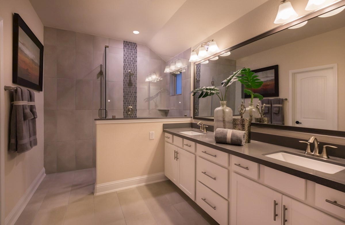 luxurious Sycamore master bathroom
