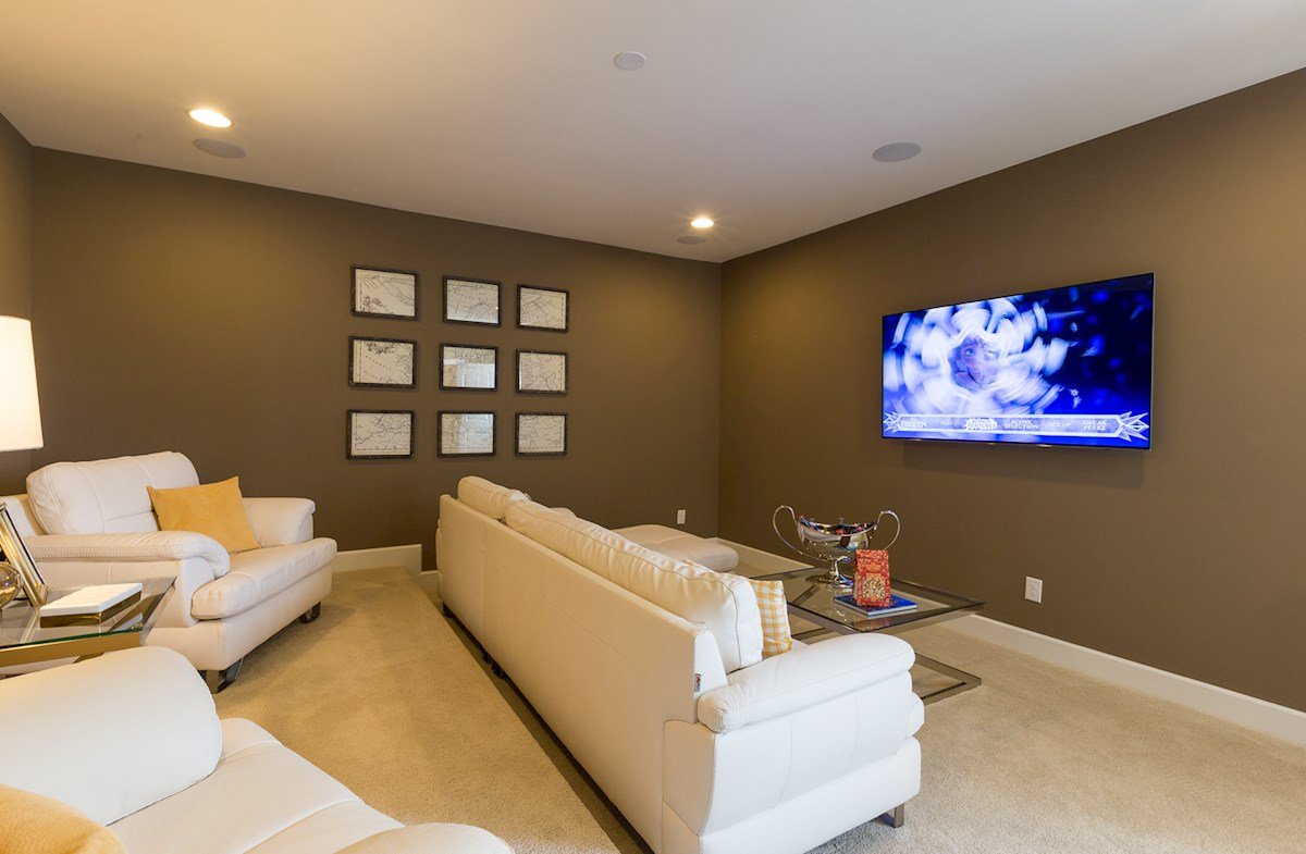 media room with tiered seating
