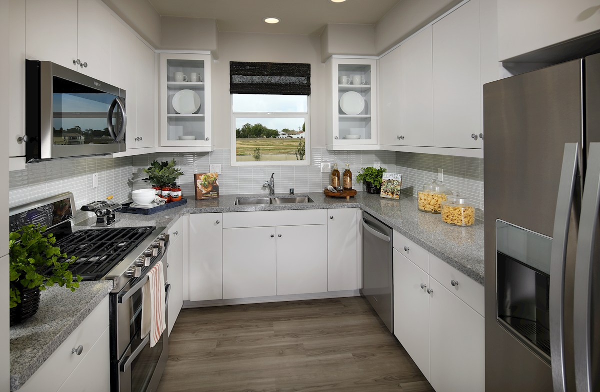 Mission Lane Violet Violet stainless kitchen appliances