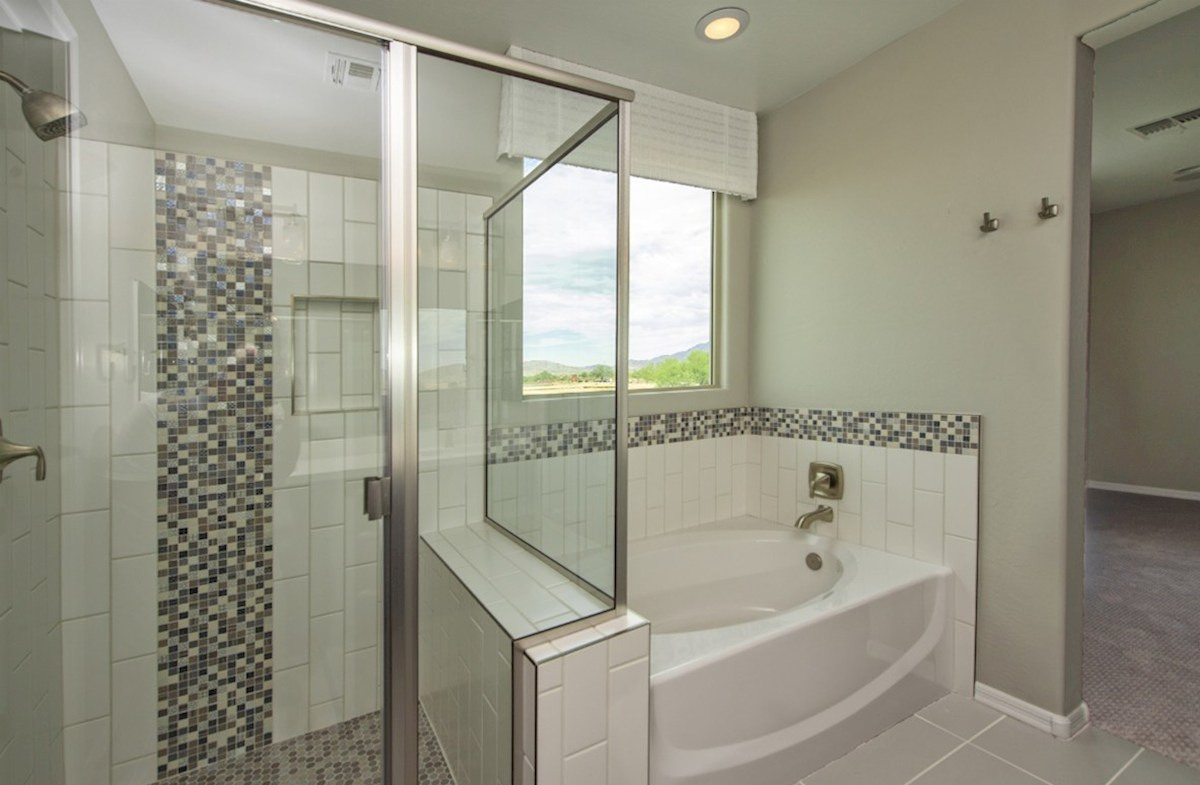 Merlot quick move-in Merlot Master Shower and Tub