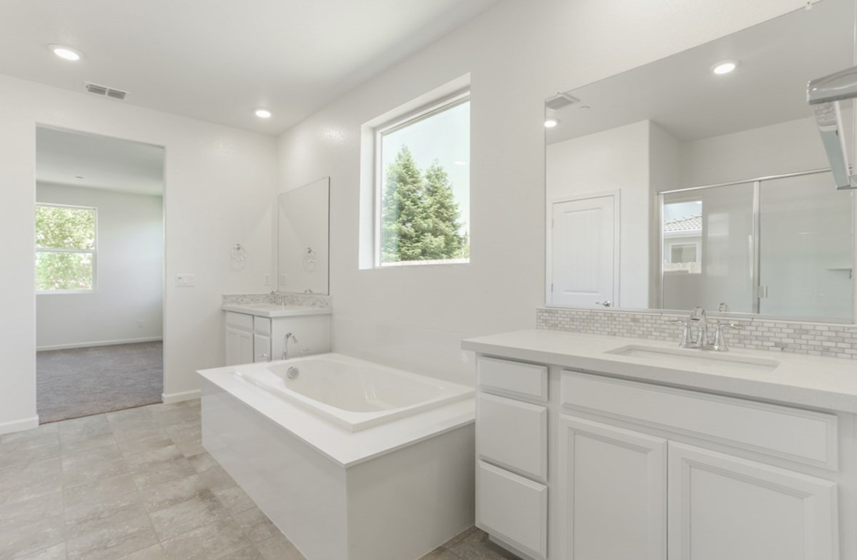 Shasta quick move-in spa inspired master bathroom
