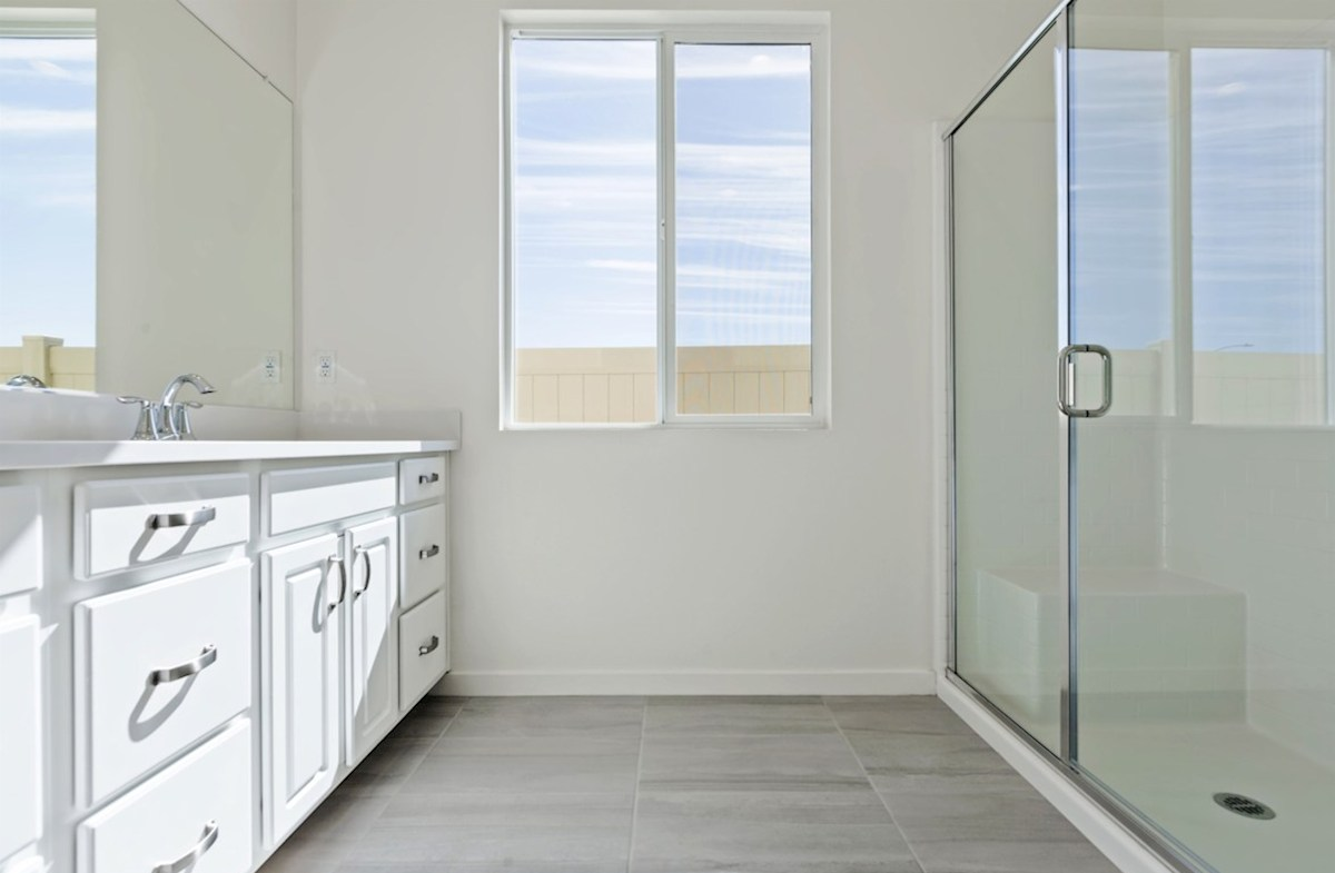 Piedmont quick move-in Master bathroom with multipule windows to maximize natural light exposure