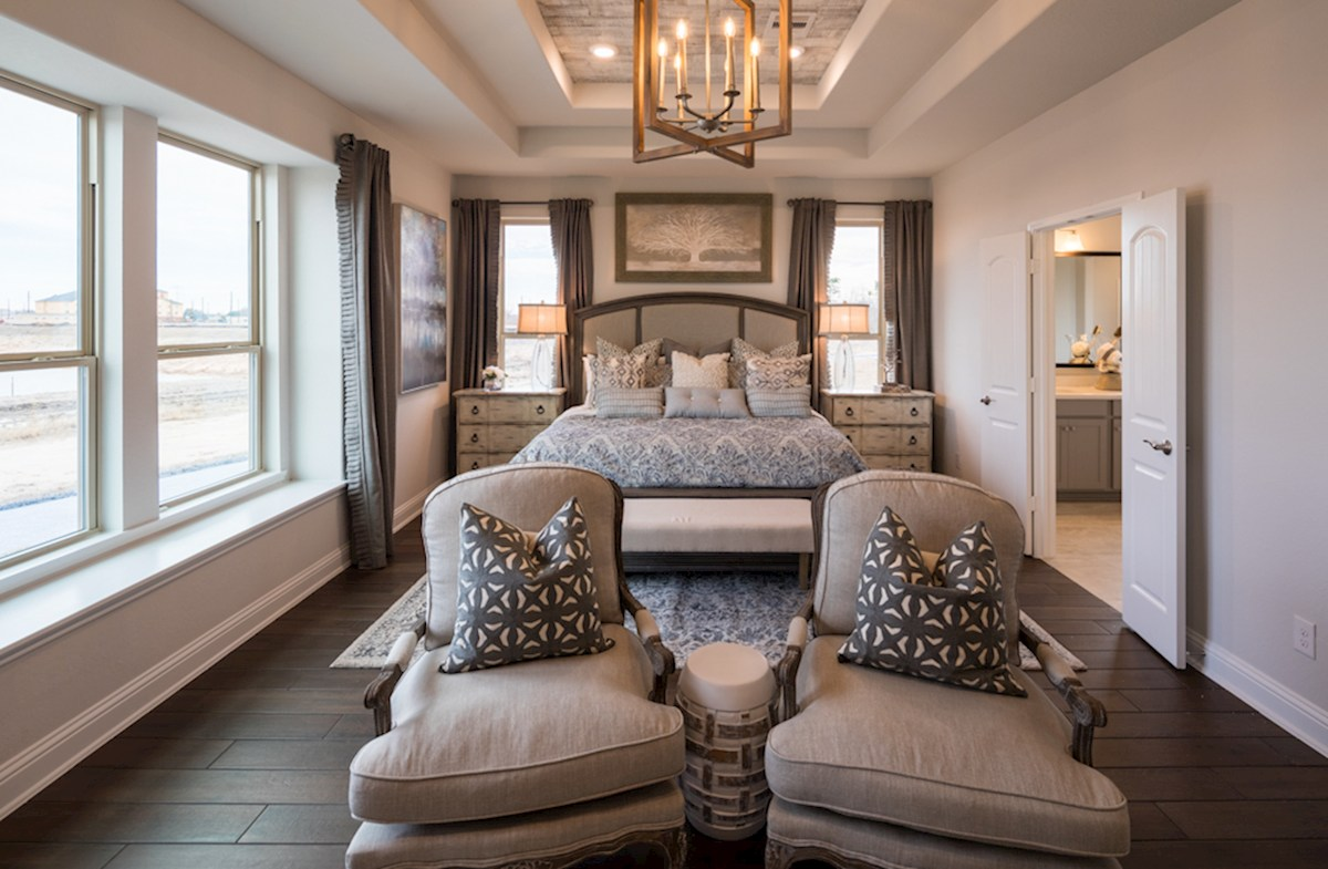 Harper master bedroom with tray ceiling