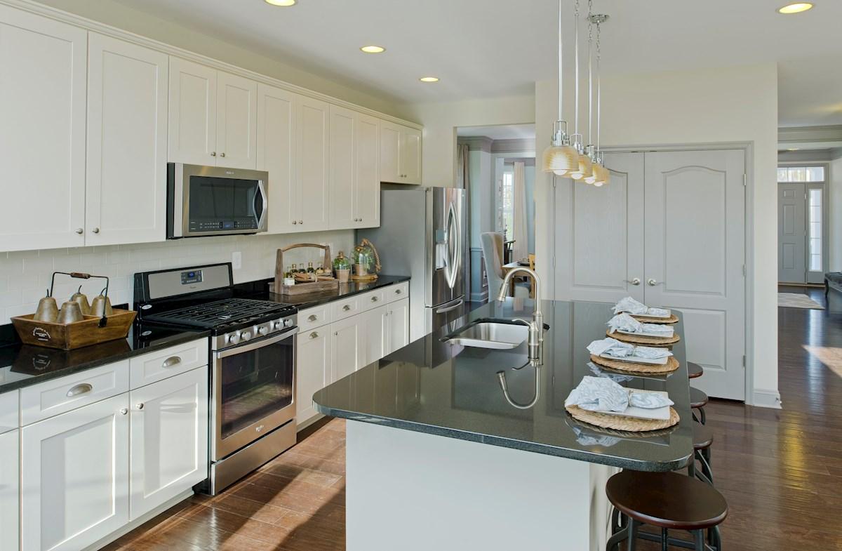 The Preserve at Windlass Run - Single Family Homes Pembrooke granite kitchen countertops