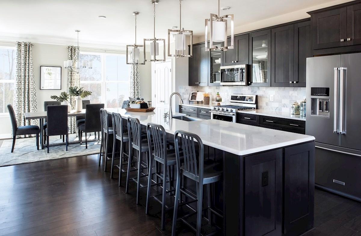Ellicott kitchen featuring granite counters