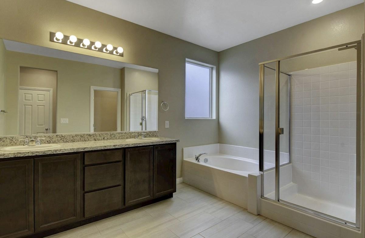 Zion quick move-in Master Bathroom - homesite #90