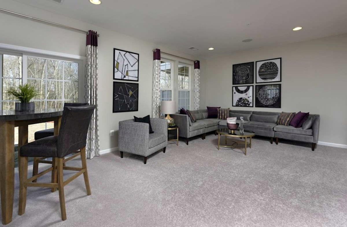 The Preserve at Windlass Run Townhomes  Vienna Vienna Recreation Room