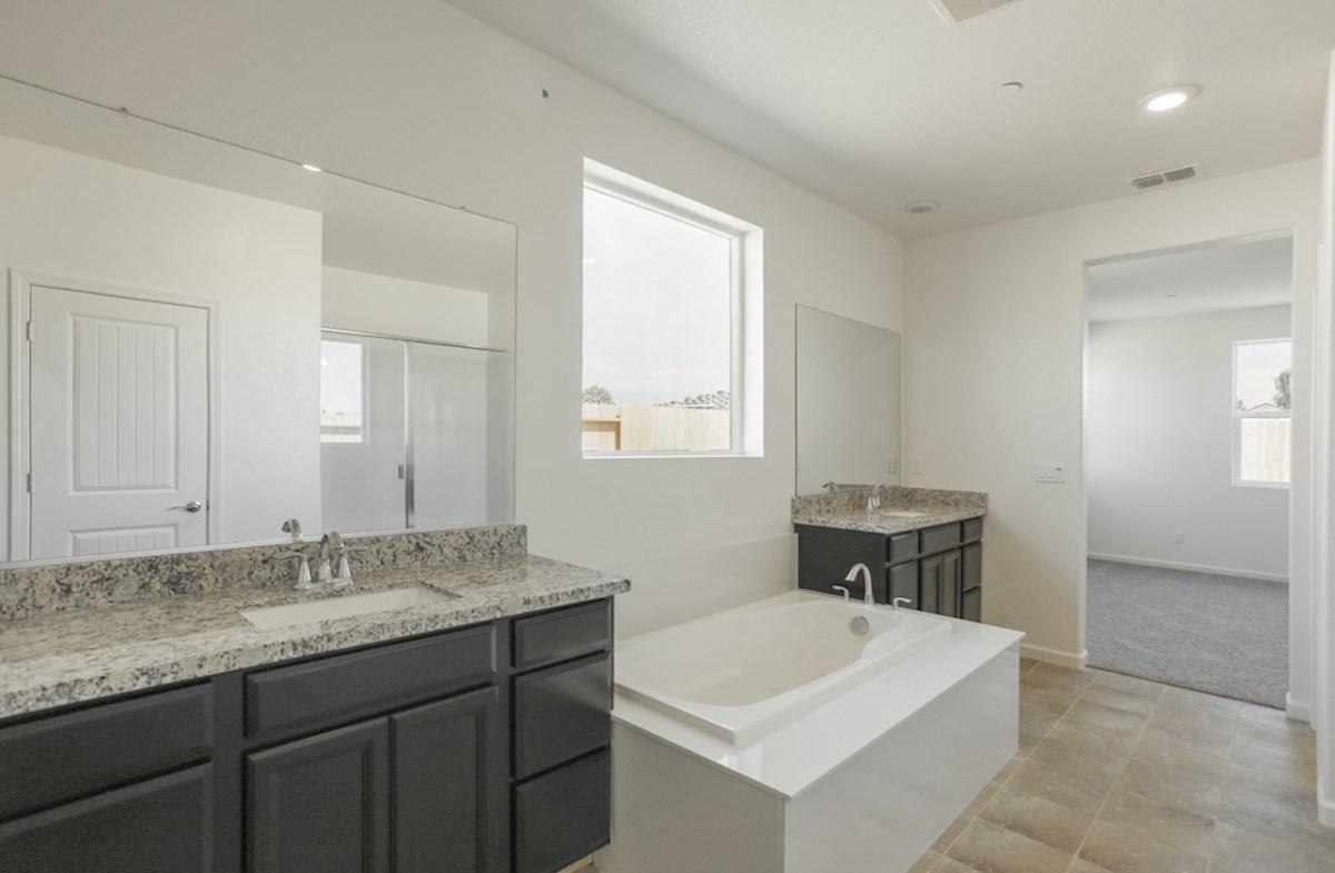 Alpine quick move-in spa-like master bathroom