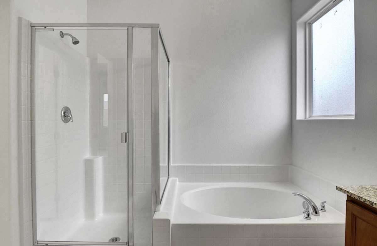 Zion quick move-in  Master Bathroom - homesite #6