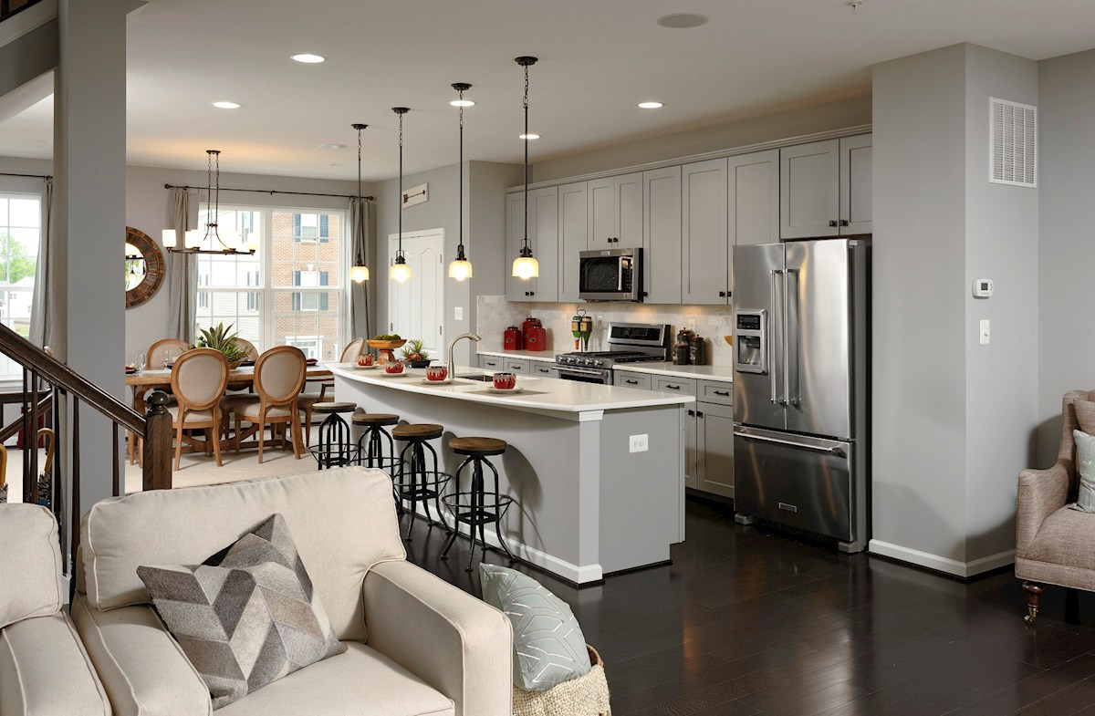 The Preserve at Windlass Run Townhomes  Vienna modern designed selections