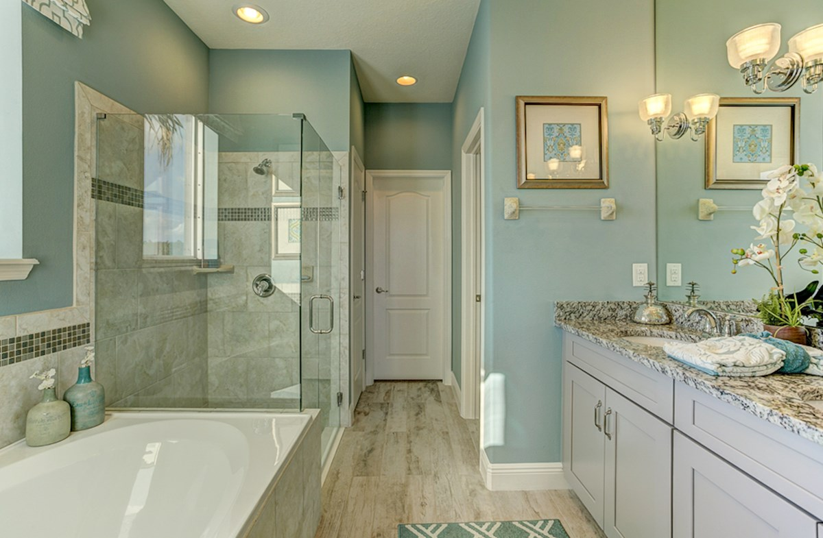 master bathroom with dual sinks and garden tub