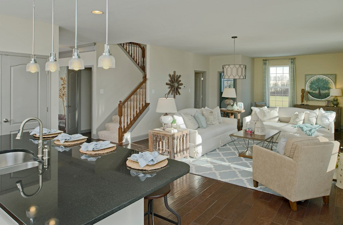 The Preserve at Windlass Run - Single Family Homes Pembrooke light-filled great room