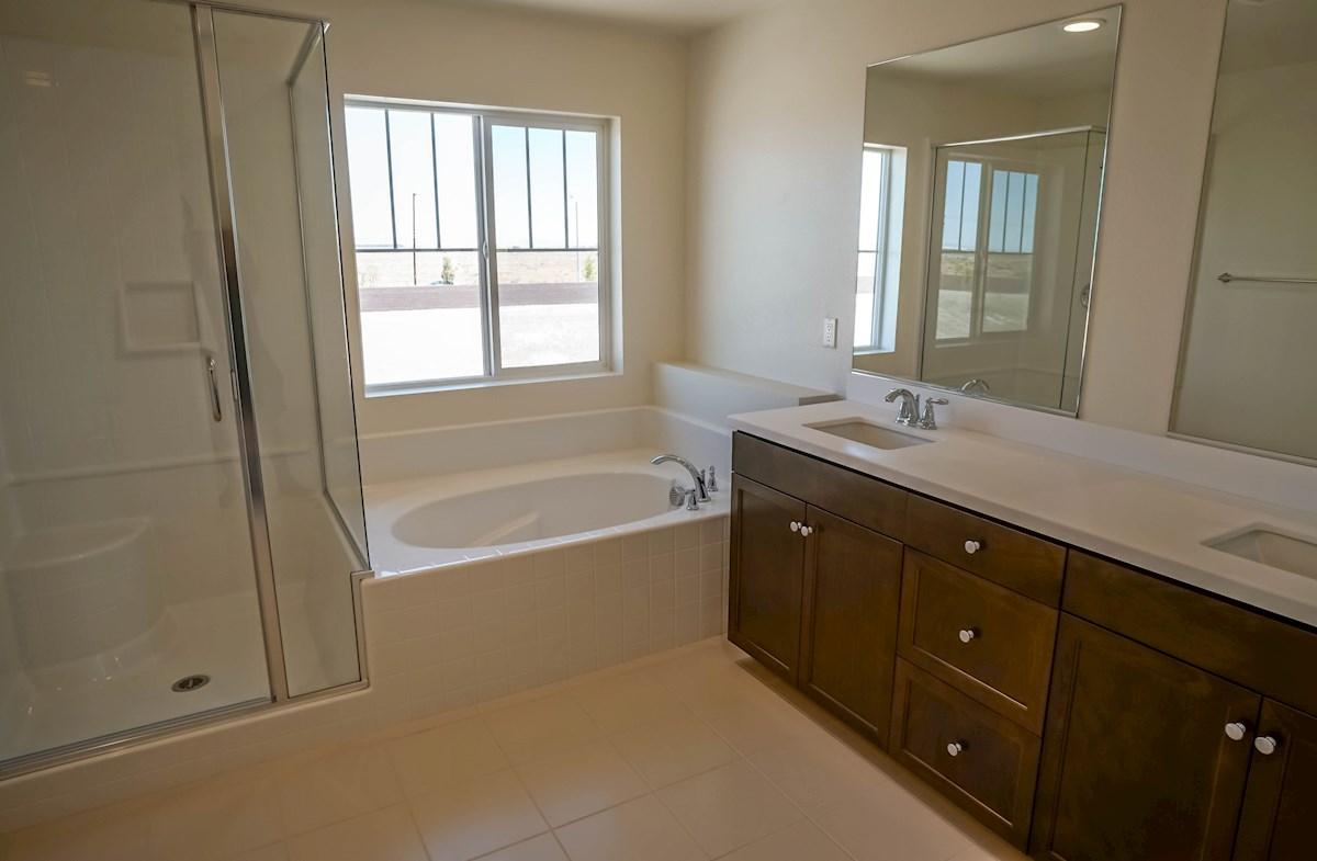 Manzanita quick move-in spacious master bathroom
