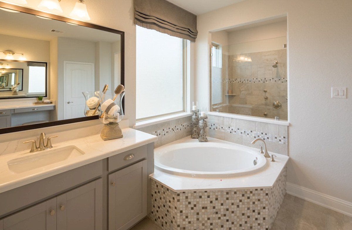 Amira  Harper master bathroom with separate tub and shower