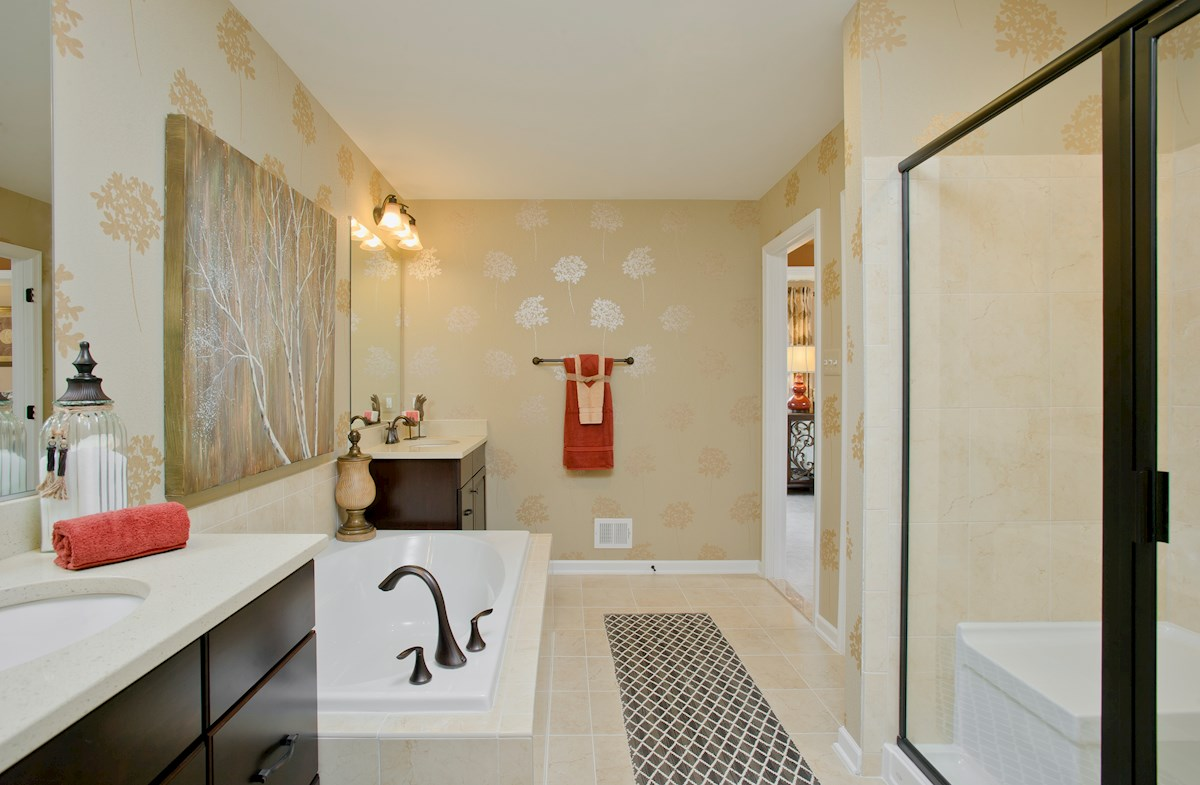 The Preserve at Windlass Run - Single Family Homes Oxford luxurious master bathroom