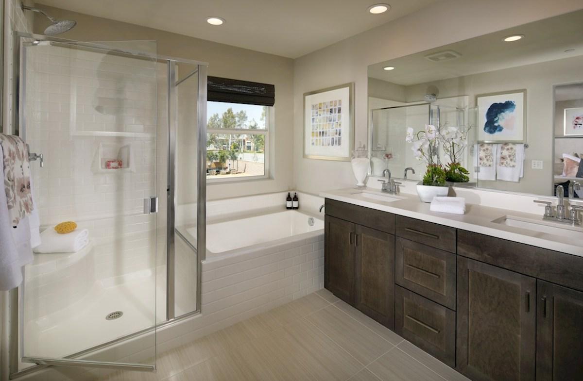 Hyde Park Lansing Lansing Master Bathroom