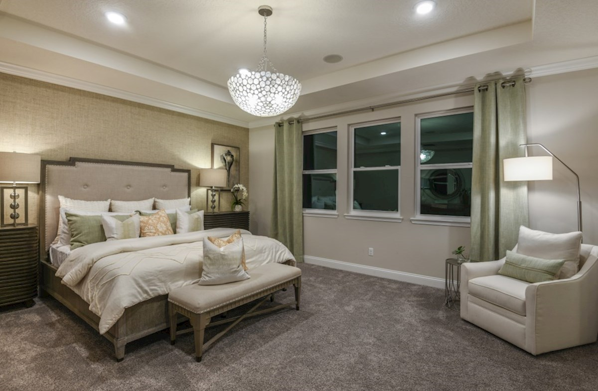 Luciana quick move-in relaxing master bedroom