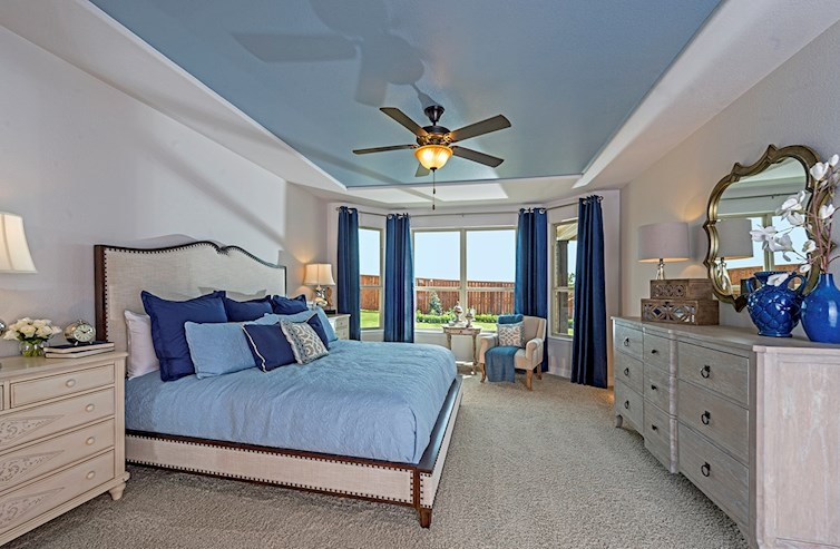 master bedroom features tray ceiling