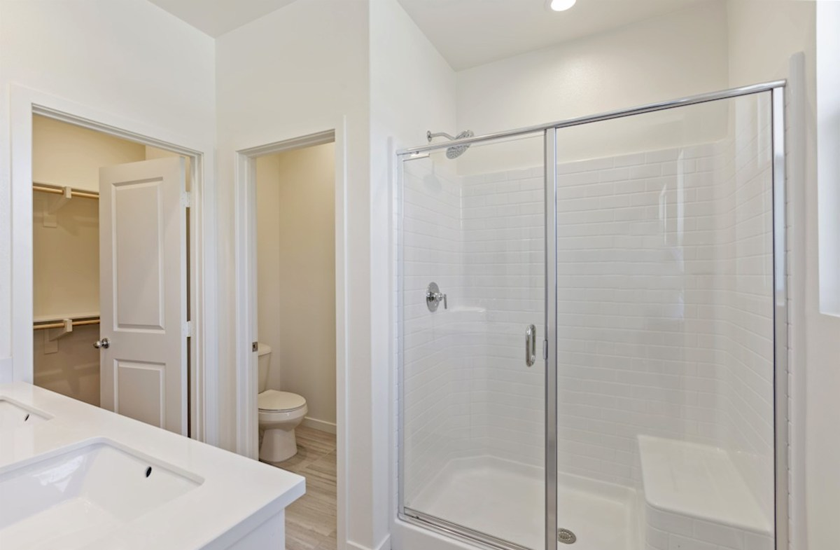 Foxtail quick move-in deluxe walk-in shower
