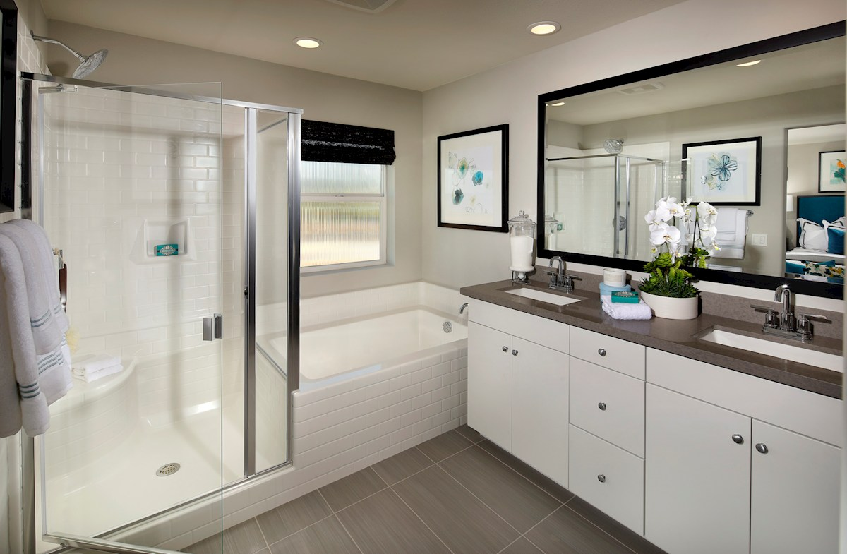 Deluxe master bath with separate shower