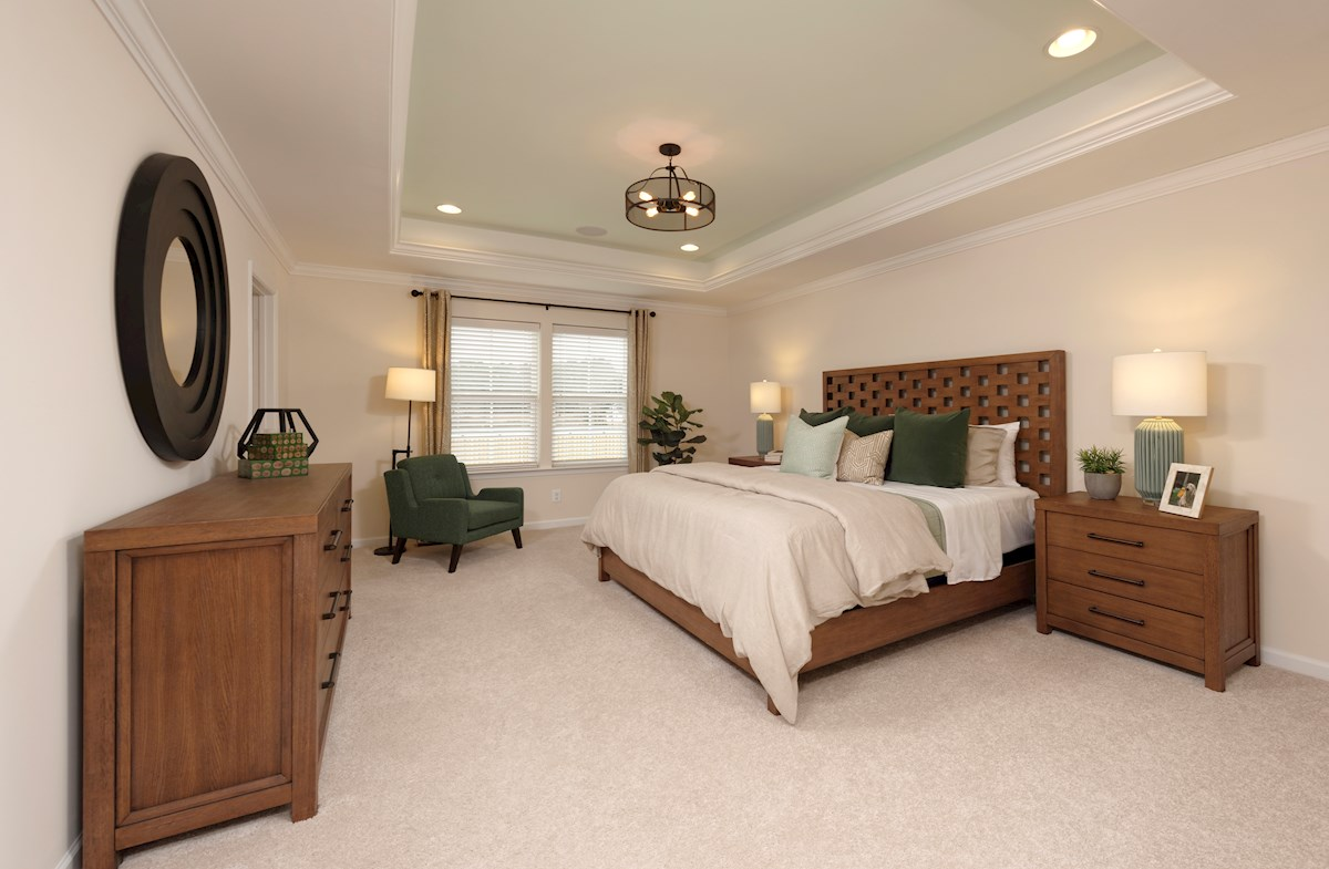 Large Rehoboth master suite with carpet