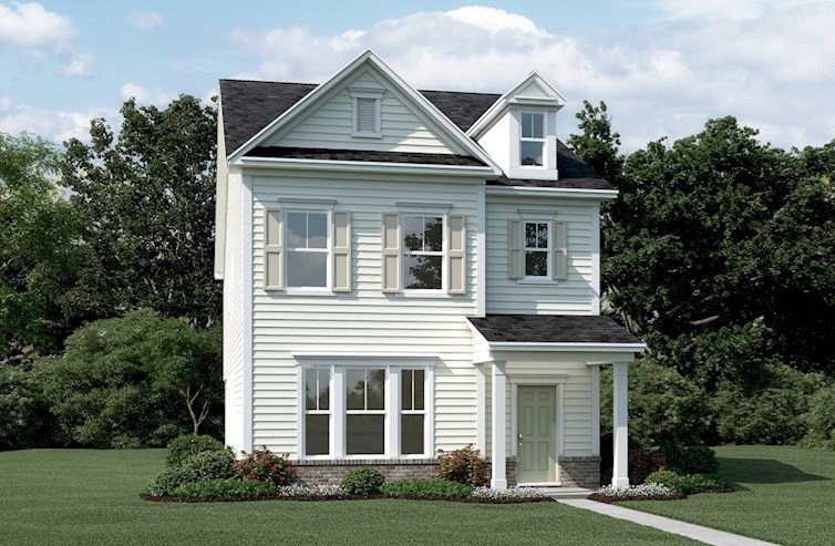 Palmetto Elevation Traditional A