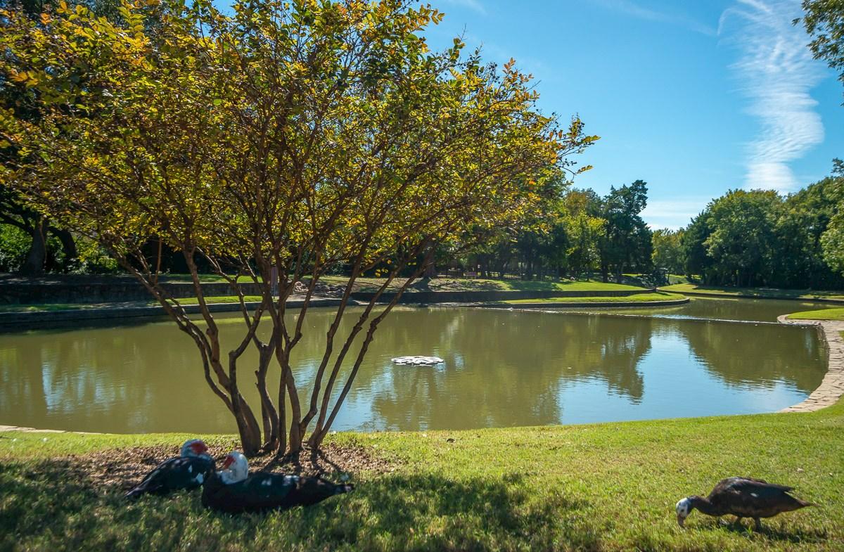 Disfrute de un poco de aire fresco en un parque local.
