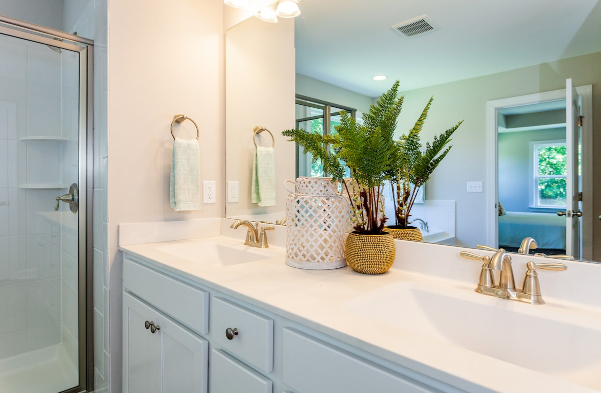 Hamilton master bathroom