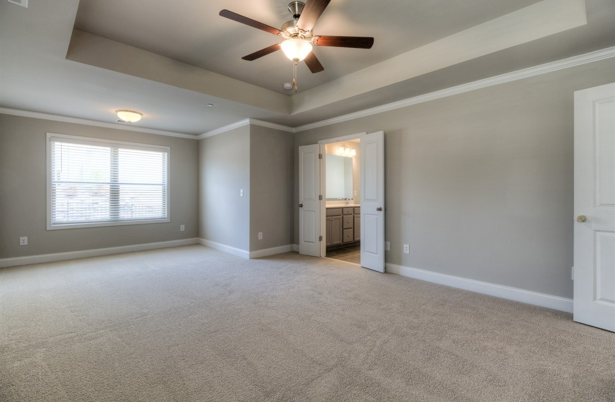 Spring Creek Place Georgetown Master Bedroom with tray ceilings