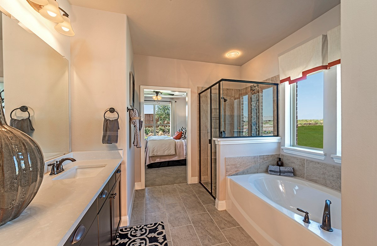 master bath soaking tub