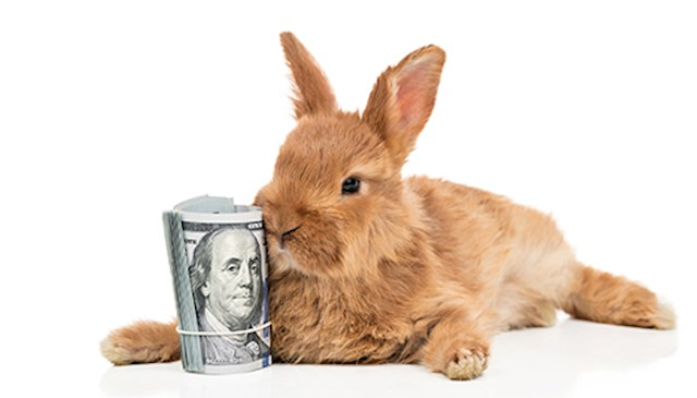 Beazer Bunny Bucks Event