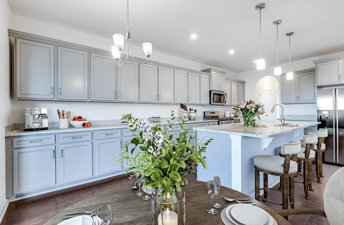 light-filled kitchen
