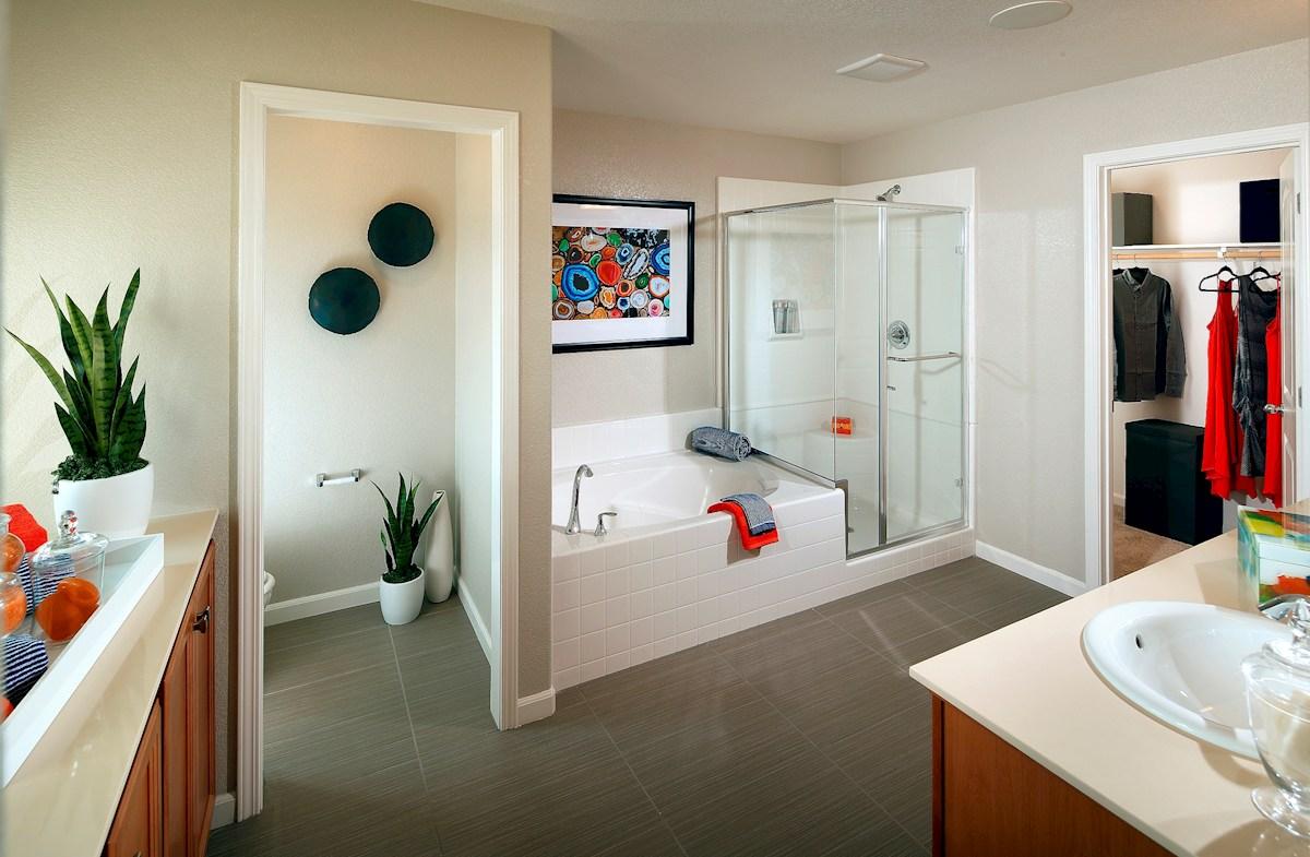 Capital Village Residence 1 spa-like master bathroom