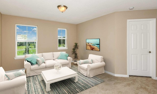 Seagrass Virtual Tour