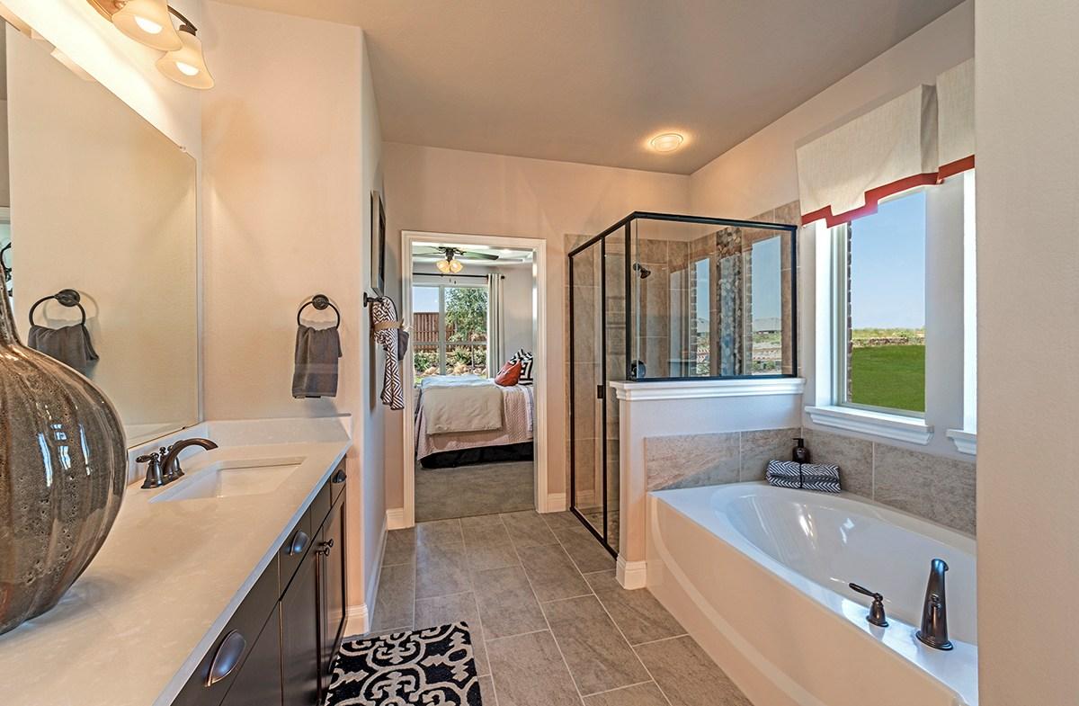 Brookhaven Master Bathroom