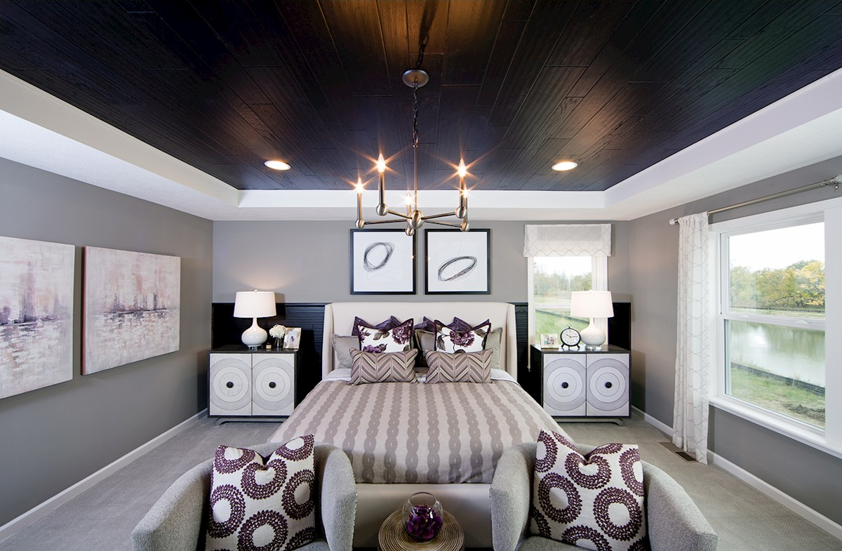 Shelby master bedroom bedroom with trey ceiling