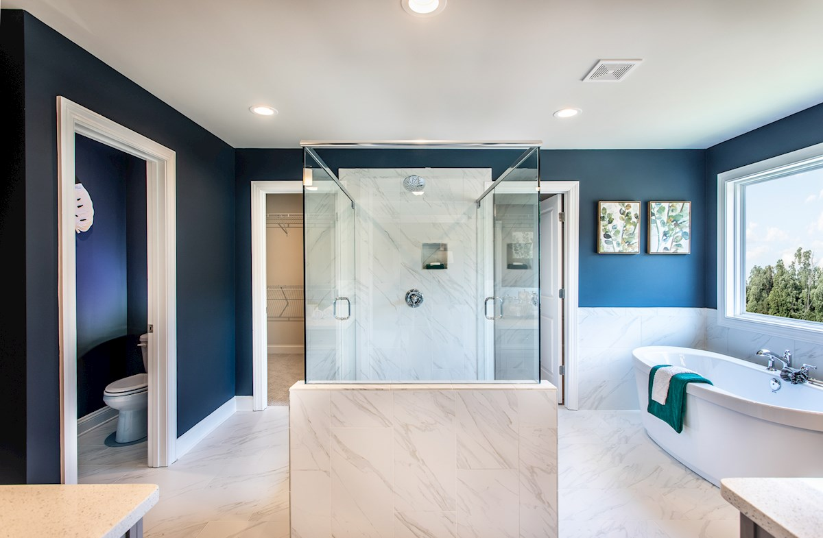 Master Bathroom large stall shower